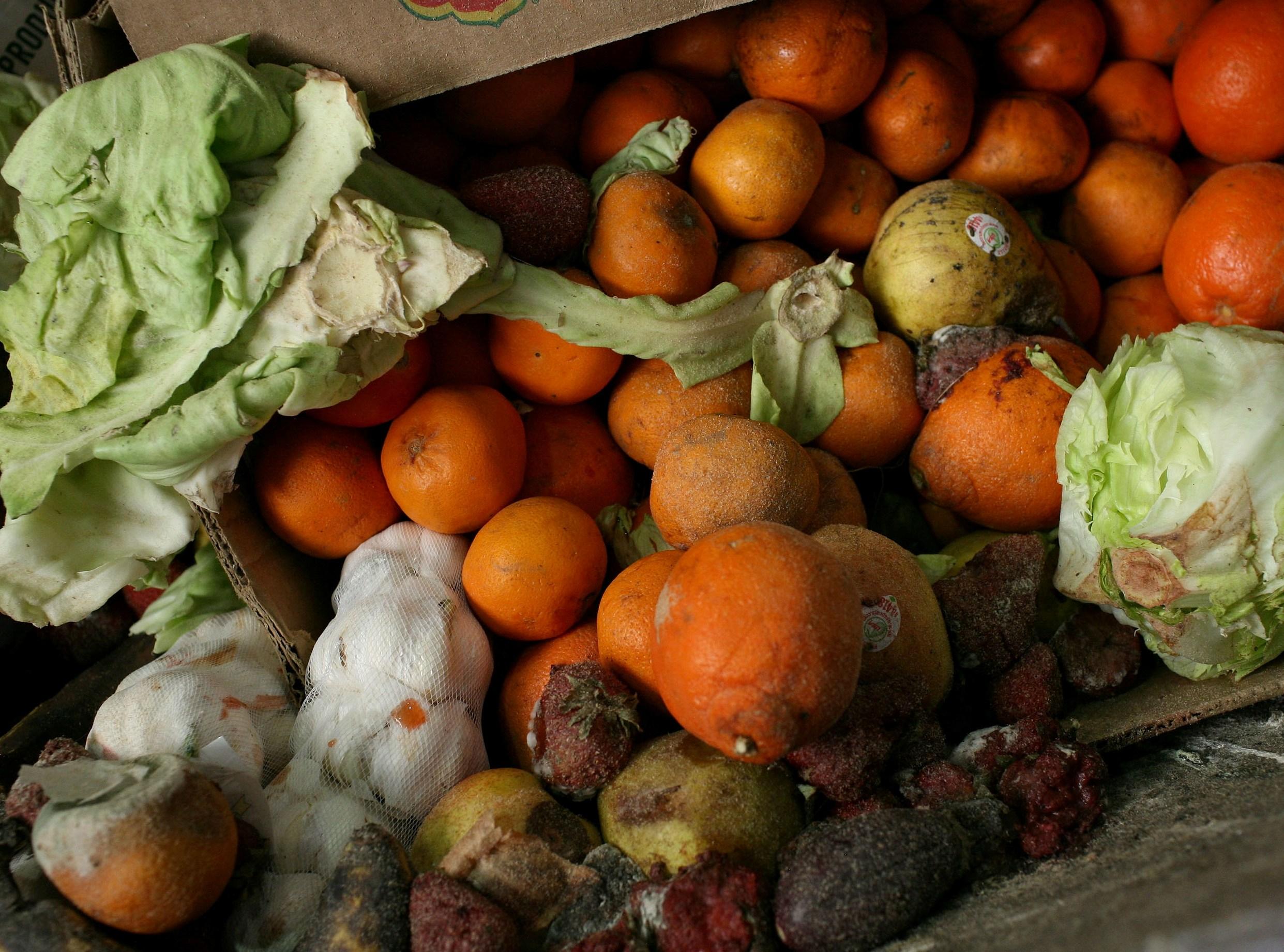 продукты для здорового питания купить оптом